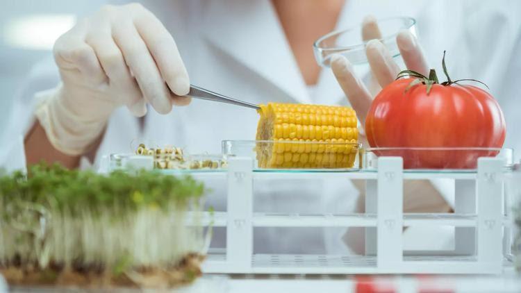kỹ sư thực phẩm